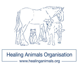 healing-animals-logo